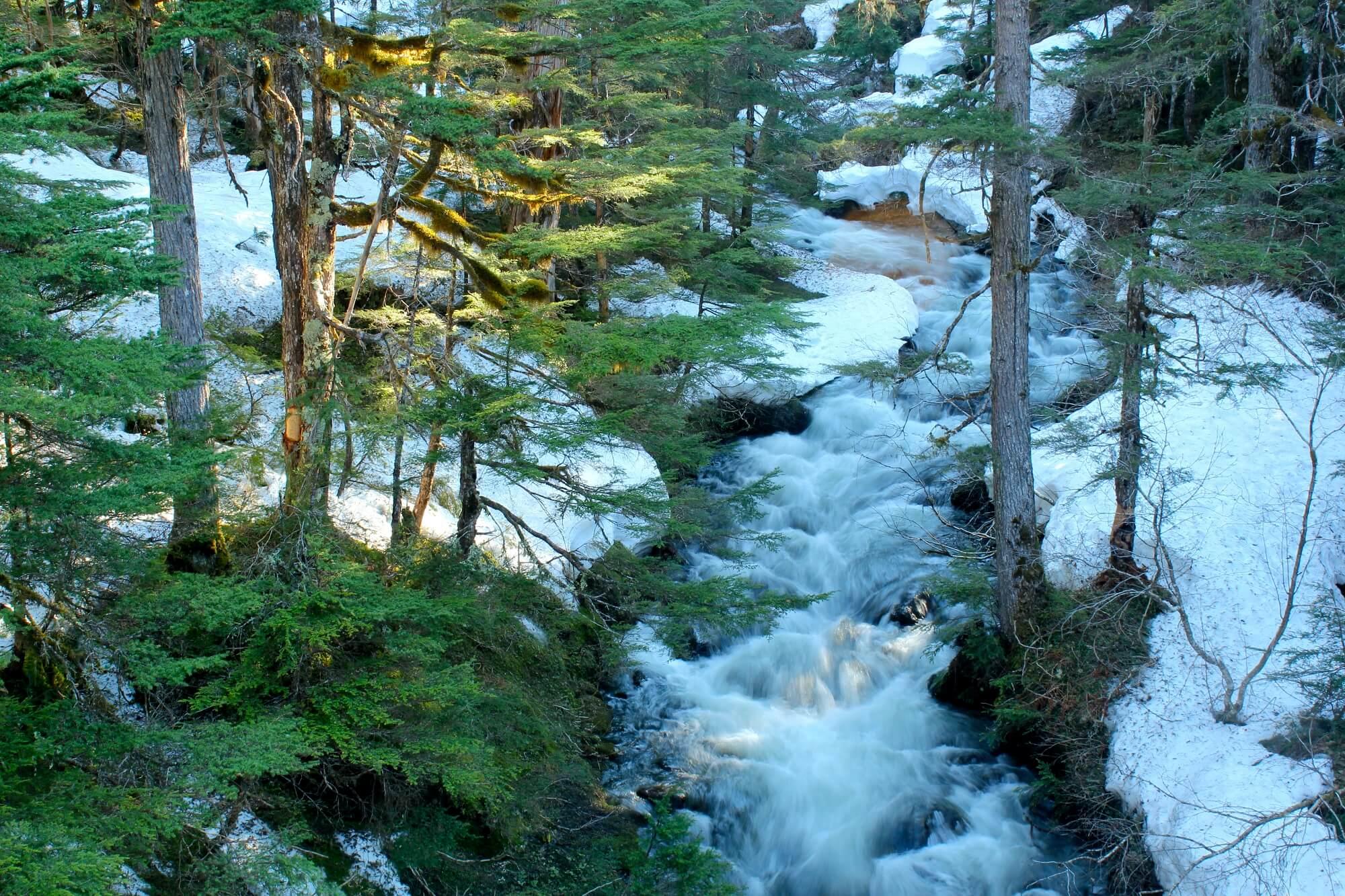 https://www.kawanti.com/wp-content/uploads/2018/10/Juneau-zip-Fish-Creek.jpg