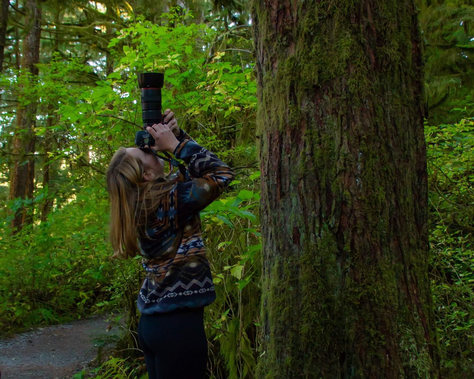 https://www.kawanti.com/wp-content/uploads/2018/10/Photo-shooting-up-tree.jpg
